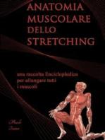 Anatomia Muscolare dello Stretching