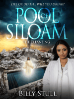 Pool of Siloam (The Cleansing)