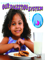 Our Digestion System
