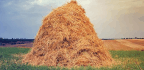 Why Mathematicians Can't Find the Hay in a Haystack
