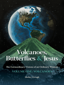 Volcanoes, Butterflies & Jesus: The Extraordinary Visions of an Ordinary Woman