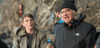 Paul Greengrass, Auteur of Globalization and Its Discontents