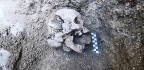 Why Did This 5th-century Child Get A 'Vampire Burial'?