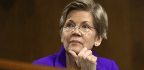 Elizabeth Warren's DNA Is Not Her Identity