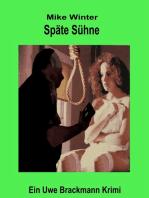 Späte Sühne. Mike Winter Kriminalserie, Band 7. Spannender Kriminalroman über Verbrechen, Mord, Intrigen und Verrat.