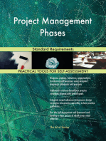 Project Management Phases Standard Requirements
