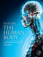 The Human Body: Linking Structure and Function
