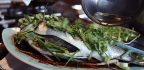 How To Steam Fish, A Key Recipe In Chinese Cooking And A Must For First-time Cooks