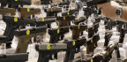 Buying My First Gun in the Dark Heart of America