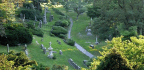 Cemeteries Are The Perfect Spot To Track Our Planet's Demise