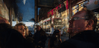 Damien Demolder's Guide To Street Photography