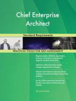 Chief Enterprise Architect Standard Requirements