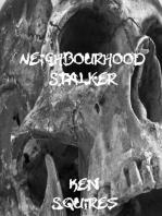 Neighbourhood Stalker