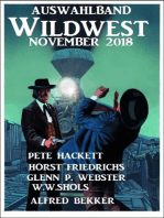 Auswahlband Wildwest November 2018