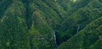 The Very Best Of Hawaii