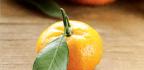 Oh My Darlin' Mandarins