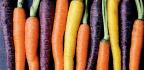 Carrots Of Colour