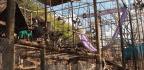 Bambelela Vervet Monkey Rehabilitation