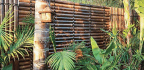 If You Like A Tropical, Balinese Or Resort-style Look, Black Bamboo Screening Is For You