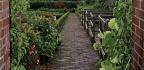 A Garden For Gourments