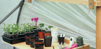 Make A Greenhouse Folding Workbench