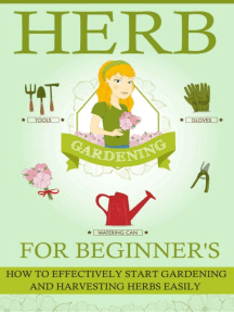 Herb Gardening For Beginners - How To Effectively Start Gardening And Harvesting Herbs Easily