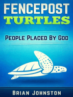 Fencepost Turtles - People Placed by God
