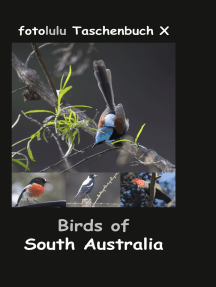 Birds of South Australia: fotolulu Taschenbuch X