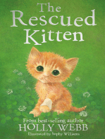The Rescued Kitten