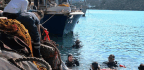 Meet Greece's Marine Trash Collectors Diving To Keep Their Sea Beautiful