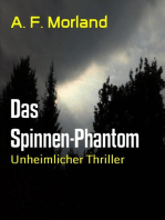 Das Spinnen-Phantom