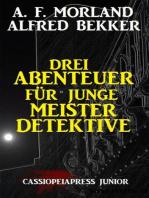 Drei Abenteuer für junge Meisterdetektive