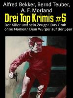 Drei Top Krimis #5