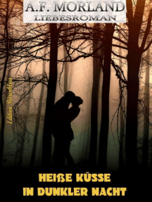 Heiße Küsse in dunkler Nacht: Roman