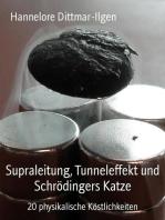 Supraleitung, Tunneleffekt und Schrödingers Katze