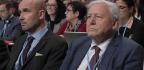 David Attenborough Warns Of 'Collapse Of Civilizations' At U.N. Climate Meeting