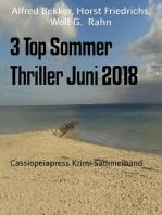 3 Top Sommer Thriller Juni 2018