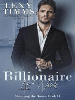 Billionaire at Work