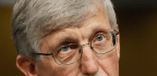 NIH To Spend Up To $20 Million On Search For Alternatives To Fetal Tissue For Research