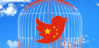 Crackdown In Beijing