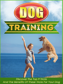 Dog Training Discover The Top 9 Tricks And The Benefits Of These Tricks For Your Dog