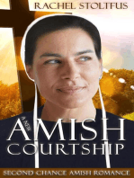 A New Amish Courtship