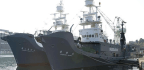 Japan Embraces Commercial Whaling, Pulls Out Of Global Alliance That Banned Practice
