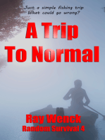 A Trip To Normal