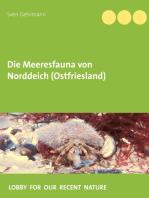 Die Meeresfauna von Norddeich (Ostfriesland)