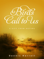 Birds Call to Us
