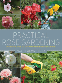 Practical Rose Gardening: How to Place, Plant, and Grow More Than Fifty Easy-Care Varieties