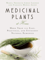 Medicinal Plants at Home