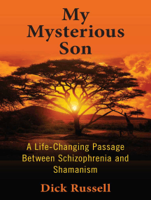My Mysterious Son: A Life-Changing Passage between Schizophrenia and Shamanism