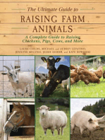 The Ultimate Guide to Raising Farm Animals